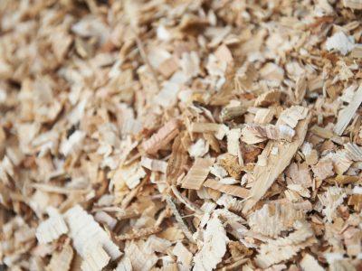 Biomass - forestry waste
